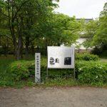 本願寺に東と西があるのはどうしてですか?徳川家康にうまく利用された